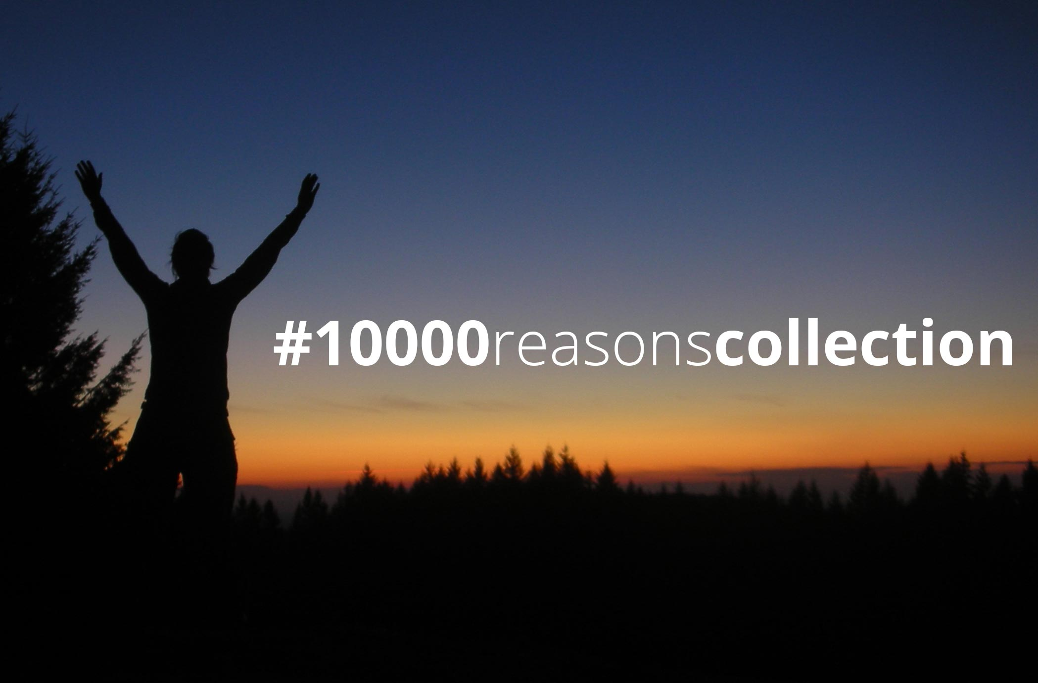 10,000 Reasons Collection
