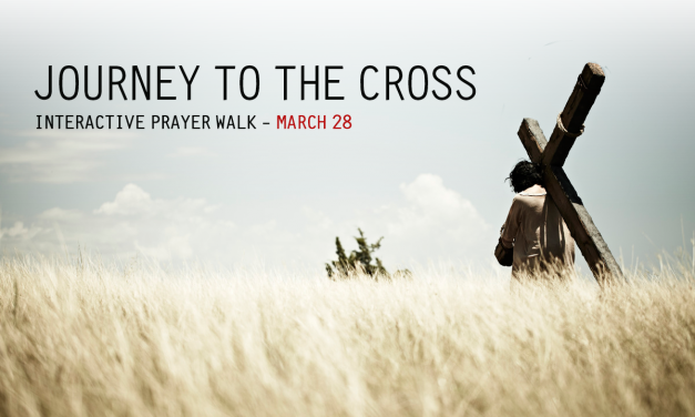 Online Stations of The Cross – Video Walkthrough